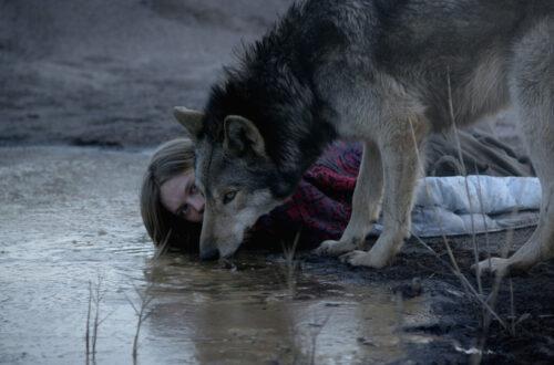Article : Elle a vu le loup – «Wild» de Nicolette Krebitz